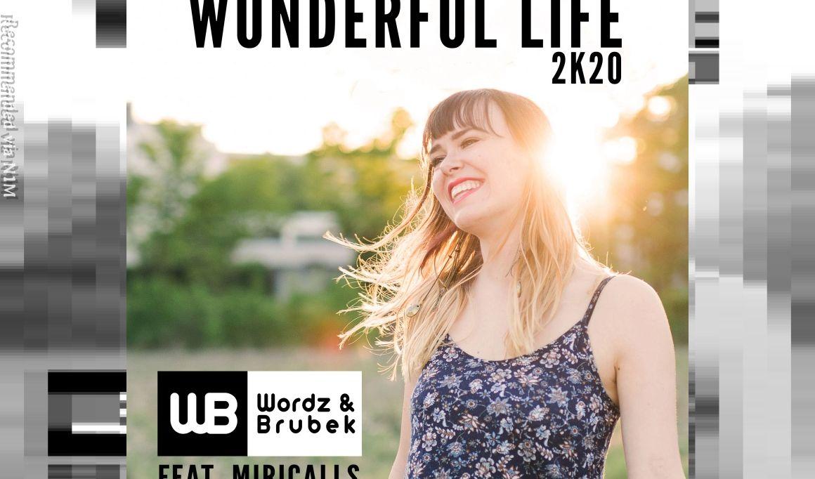 Wordz & Brubek feat. Miricalls - Wonderful Life 2K20 (Wordz Deejay Remix Edit)