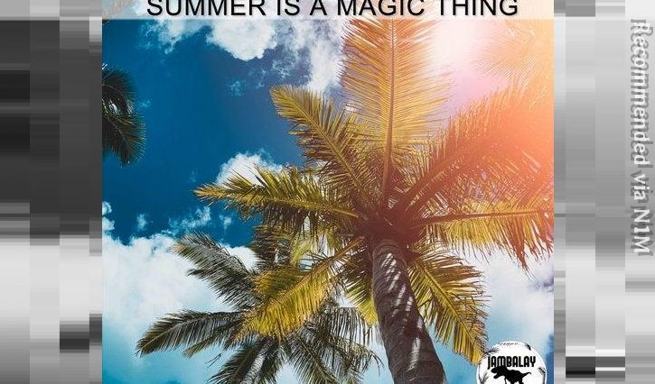 Jack Delhi , Reinoud van Toledo -Summer Is A Magic Thing (El Brujo Remix)