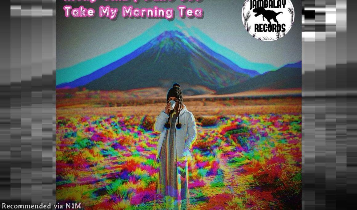 Ricky Sinz & Jake 303 - Take My (Mauro Novani remix)