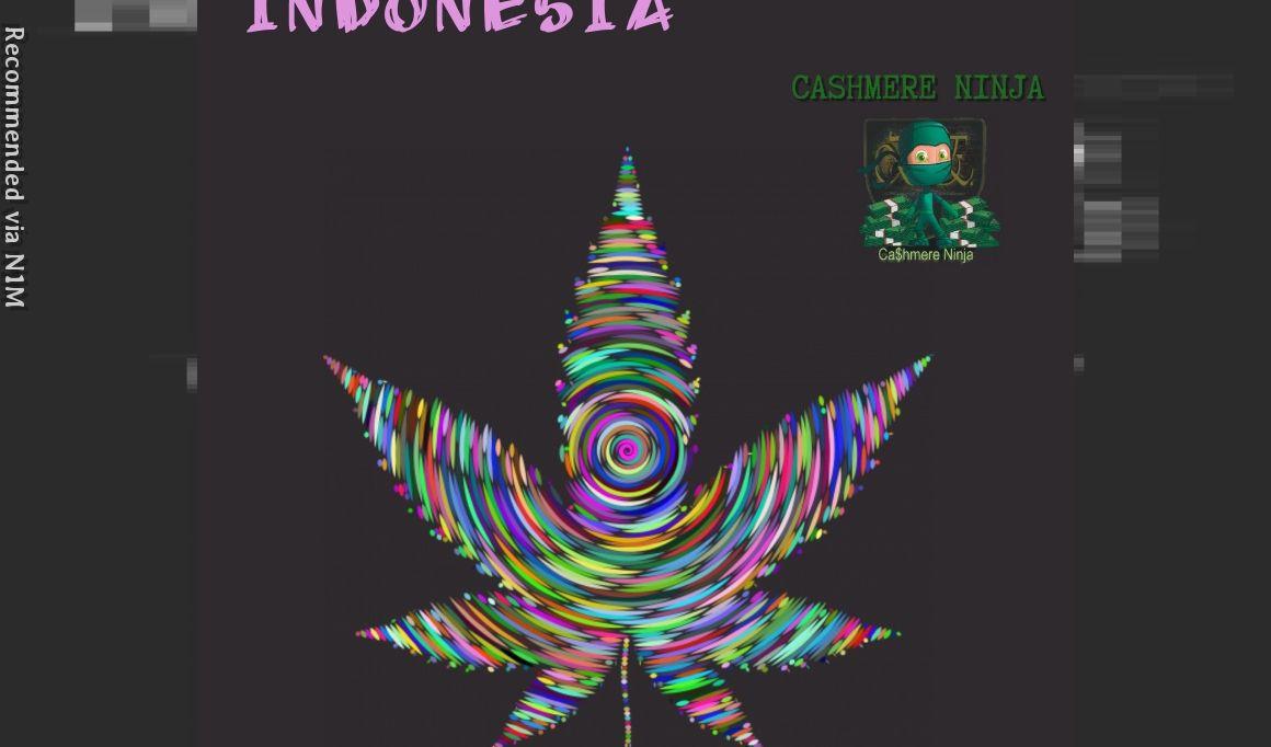 Indonesia ft. Cashmere Ninja