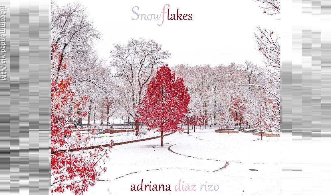SNOWFLAKES - DEBUT SiNGLE