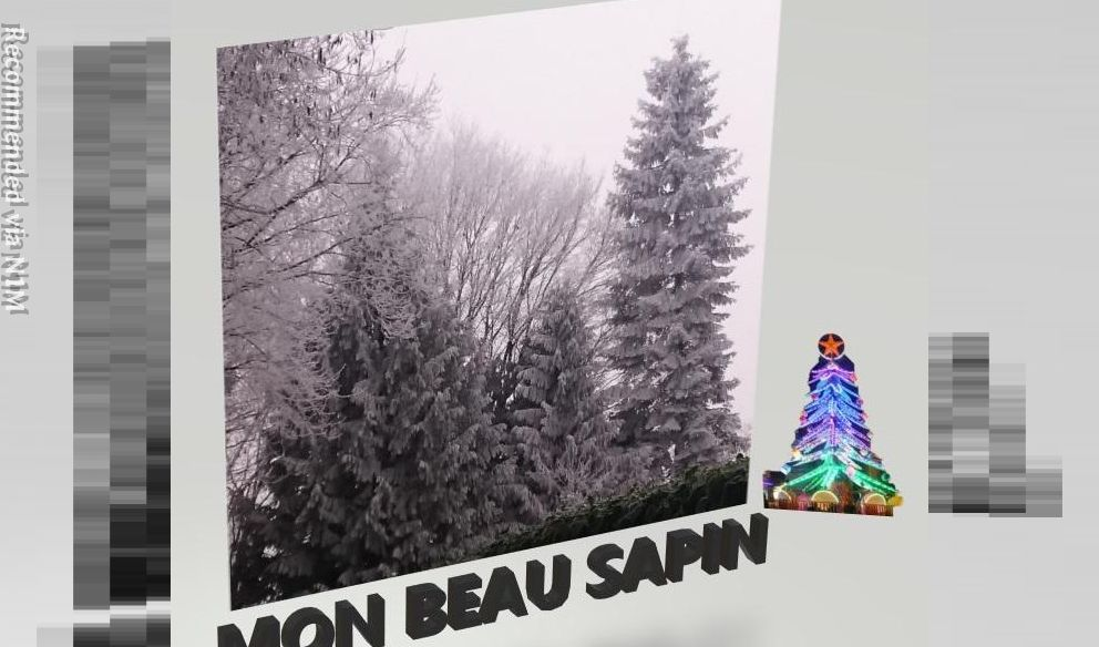 Mon Beau Sapin - My Christmas Tree