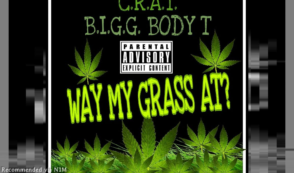 Way My Grass At? (Feat. B.I.G.G. BODY T)