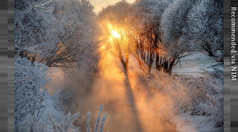 Frosen Sunbeam