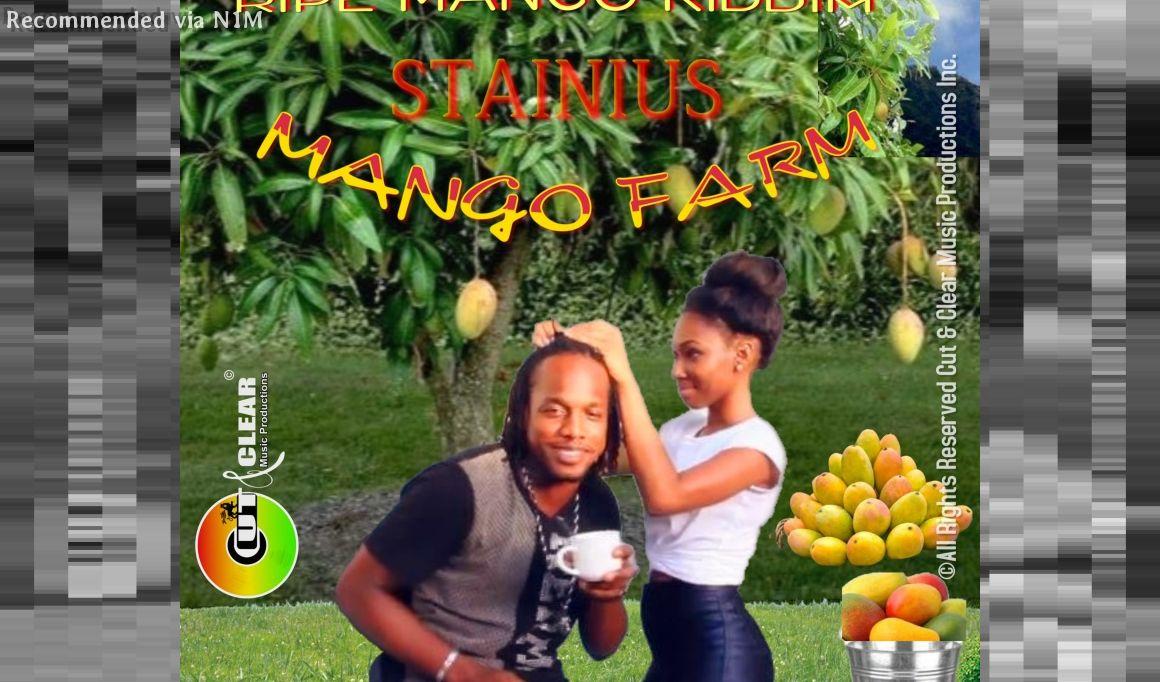 Mango Farm - Stainius