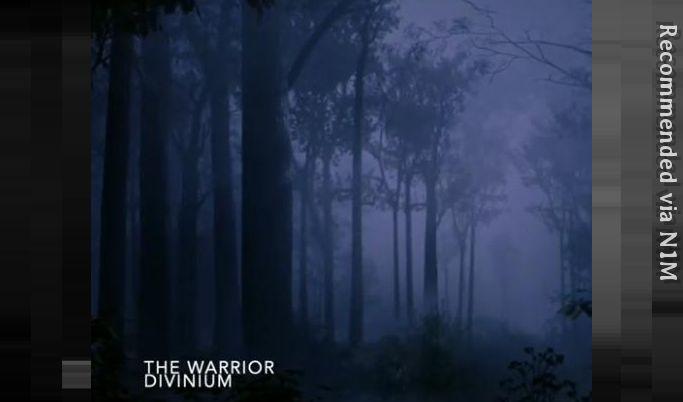 The Warrior - Divinium