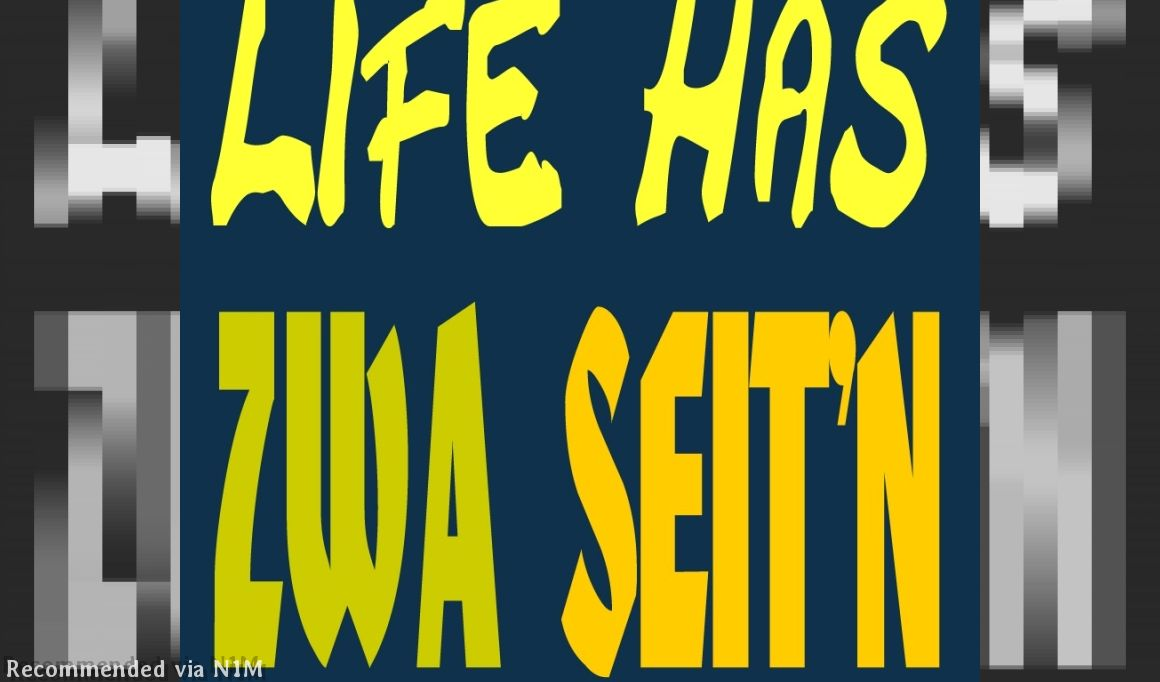 MEXICO REPRISE (Life has zwa Seit'n - white - The Omega Project)