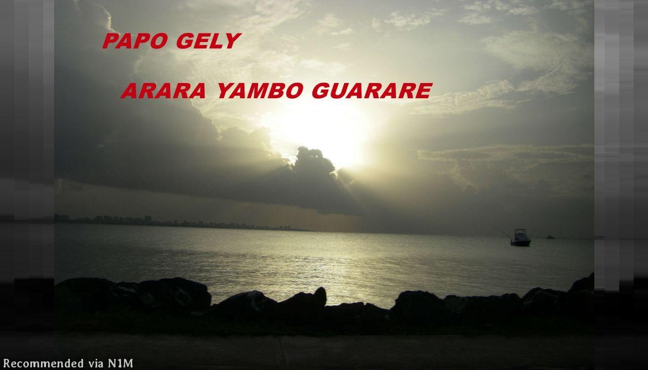 ARARA YAMBO GUARARE